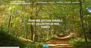 site du groupement forestier du Chat sauvage